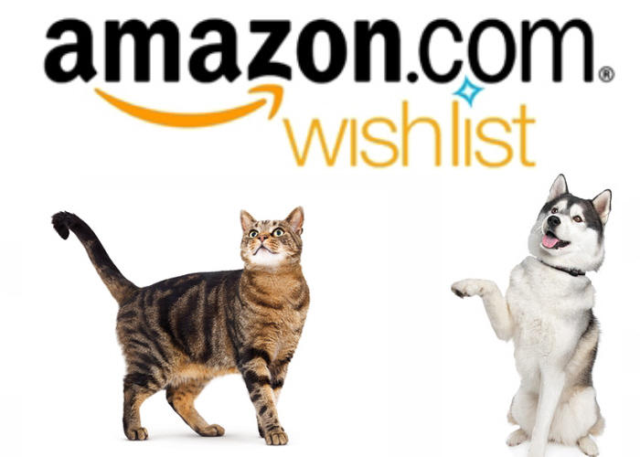 Nikki Summer's Amazon Wish List