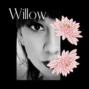 Wheres_Willow